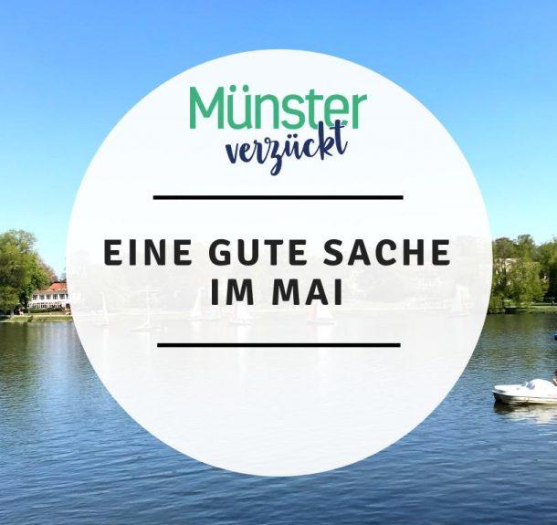 Münster, Gute Sache, Mai