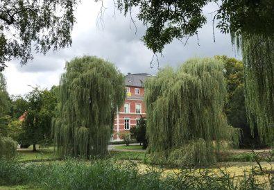 Wohnungen in Münster, Tipps